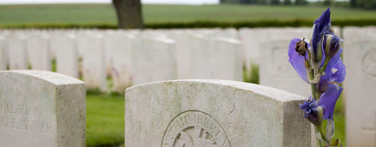 Albert, graven Eerste Wereldoorlog