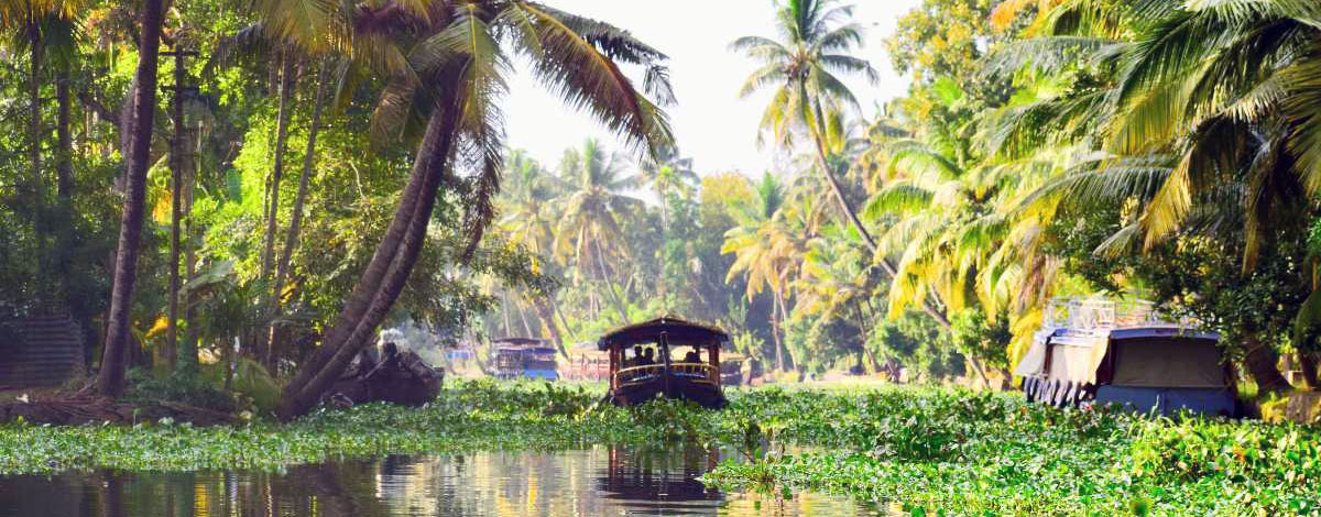 Een rondvaart door de Kerala Backwaters