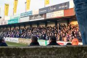 Fans van Beerschot-Wilrijk in de uitwedstrijd tegen Hamme
