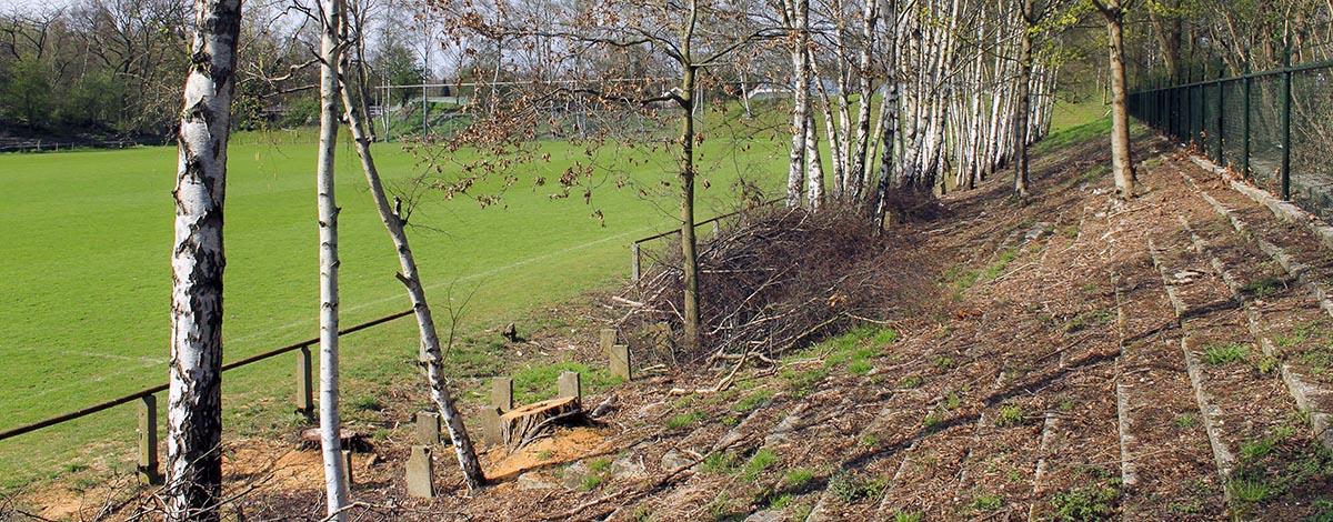 Stadion De Kraal, Venlo