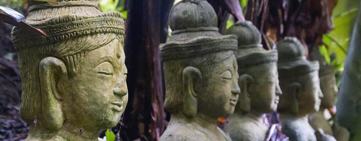 Chiang Mai en de geheime jungle tempel